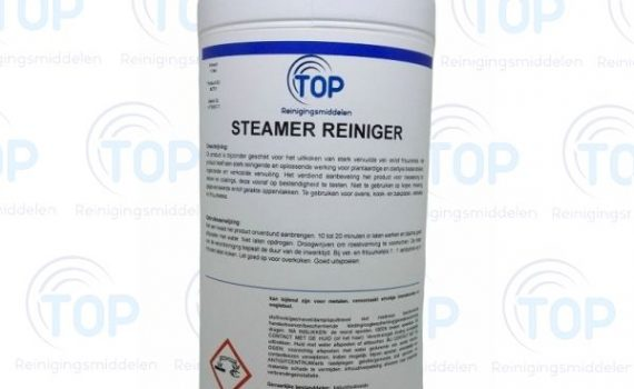 Steamer Reiniger